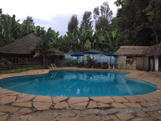 The Vijiji Center Lodge & Safari: photo2.jpg