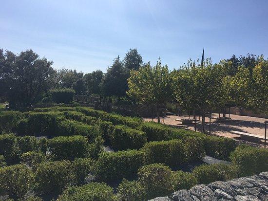Kuva jardin romain caumont sur durance tripadvisor - Jardin romain caumont sur durance ...