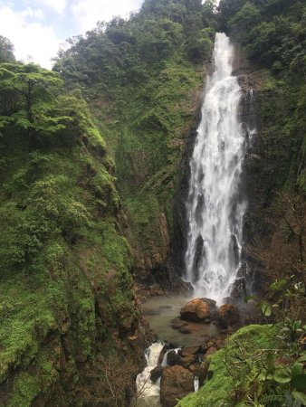 Dabbe Falls: Path of trek and waterfalls
