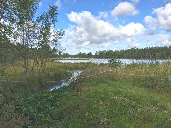 Mustasaari, Finlandiya: Monenlaista maisemaa vaelloksella