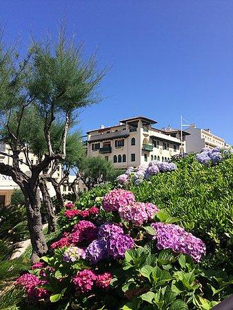 Bayonne, France: Biarritz Villa and hortensias