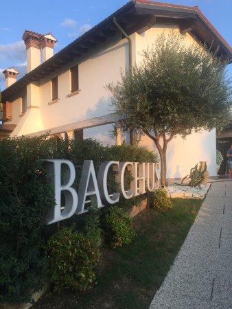 Quinto di Treviso, Italia: Bacchus 20/8/17