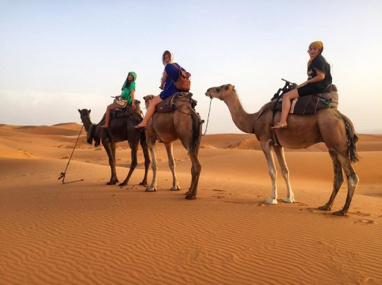 Desert Tours Marocco  Day Tours: our camel ride