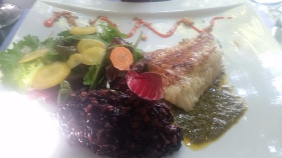 Lunel, France: pavé de saumon et risotto de riz noir salade un régal pour le déjeuner