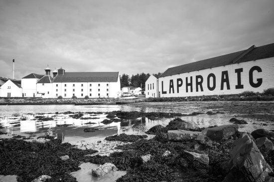 Laphroaig Distillery: photo1.jpg