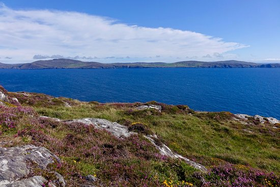 Sheep's Head Peninsula : One of many beautiful scenes along the way, this one looking north at Bantry Bay.