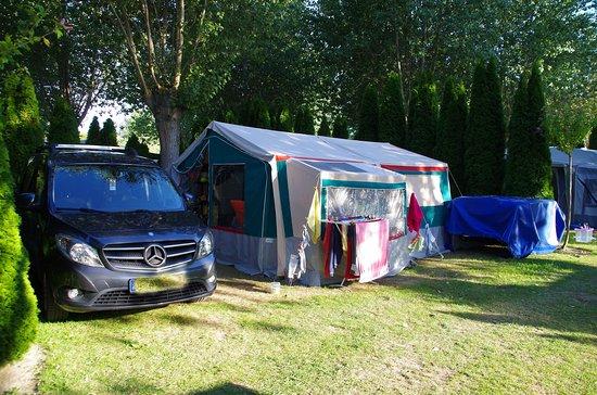 Camping La Route Blanche : Stellplatz