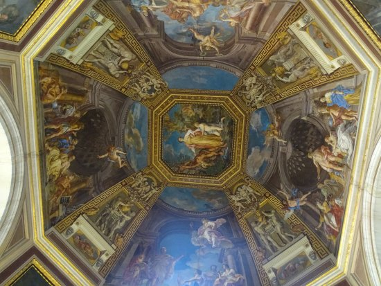 Tours of the Vatican with Tom & his Team: Beautiful ceilings in Vatican  museum