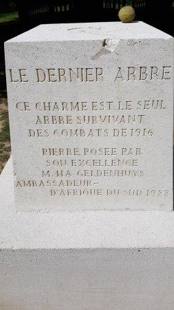 Delville Wood War Memorial: Stèle du charme rescapé des bombardements