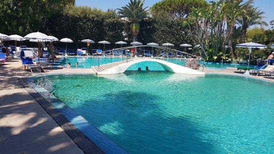 Park Hotel Terme Mediterraneo: 20170816_132944(0)_large.jpg