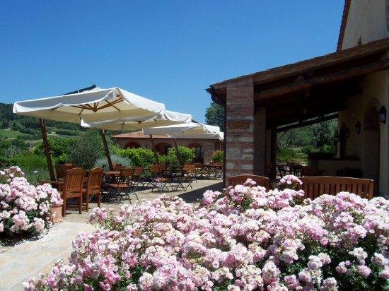 Montefiridolfi, Itália: Ristorante