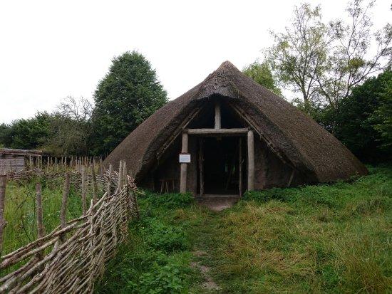 Cranborne, UK: Dwelling