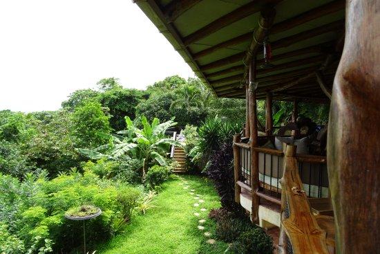 Villa Mango: Terrasse und Garten