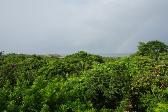 Villa Mango: Blick von der Terrasse
