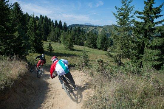 Bikepark Les Gets: @N. Joly