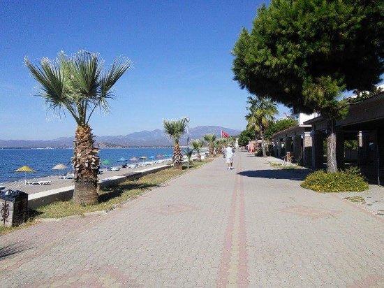 Jiva Beach Resort: received_10154683753678270_large.jpg