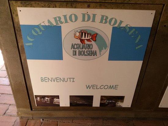 Bolsena, Italia: 20170821_111318_large.jpg