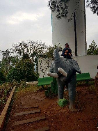 Elephant Wall (Morro do Elefante): Elefante