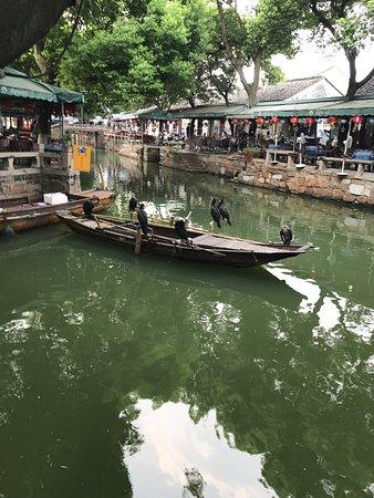 Tongli Town: photo2.jpg