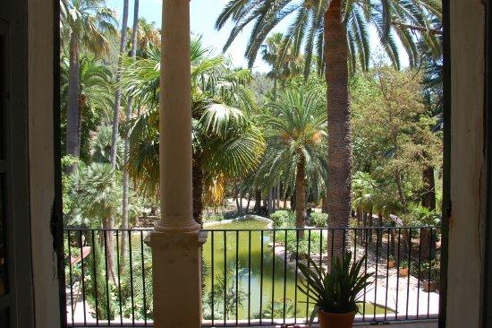 Bunyola, Spagna: Blick aus dem Haus