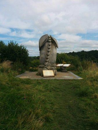 Newcastle Emlyn, UK: IMG_20170810_161940_large.jpg