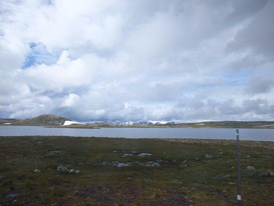 Hol Municipality, Norveç: Тундра
