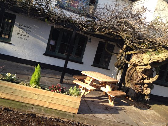 Farnham Common, UK: Crown Wysteria
