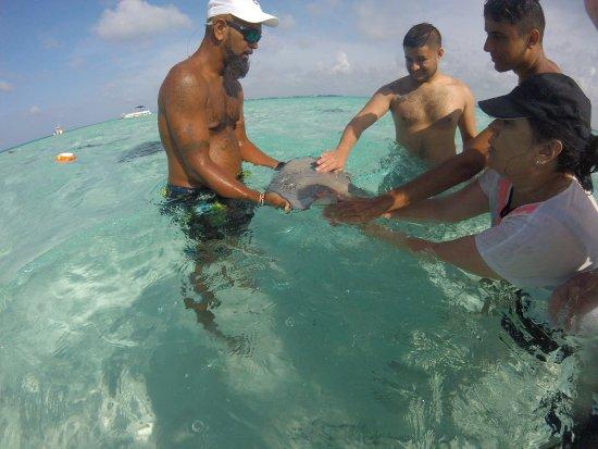 George Town, Grand Cayman: Ezona's Aquatics