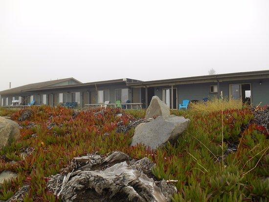 Crescent Beach Motel: Right on the beach!