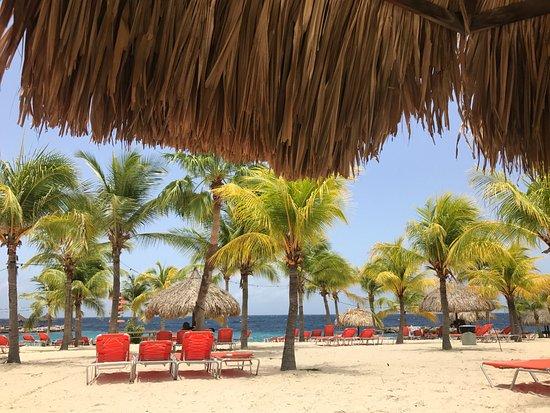 Blue bay lodges desde dorp sint michiel for Apartahoteles familiares playa