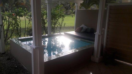 Koro Sun Resort and Rainforest Spa: Pool at the Rainforst Bure