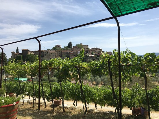 Greve in Chianti, Italy: View from Montefioralle Winery