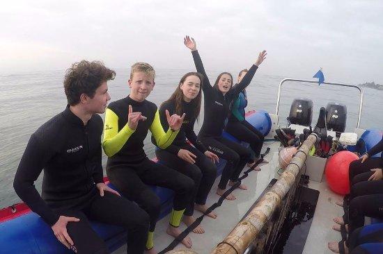 Scottburgh, Sydafrika: Fun with sharks