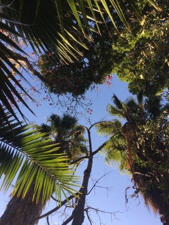 Cabanas, Sun City: photo1.jpg