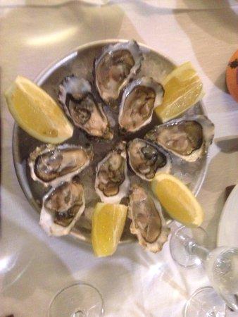 La Taverna del Lupo di Mare: photo9.jpg