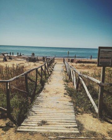 Il Faro照片