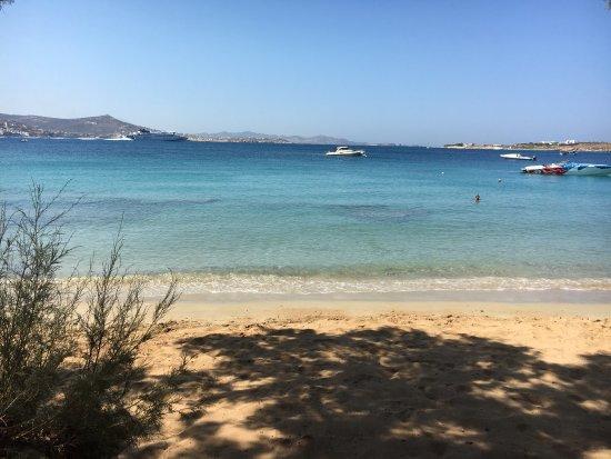Krios Beach Camping: photo4.jpg