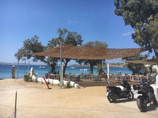 Krios Beach Camping: photo5.jpg