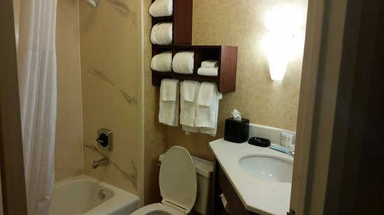 West Columbia, SC: Nice size bathroom with open shelving under the sink