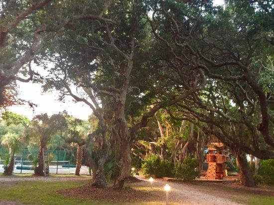 Manasota Beach Club: Playground and Tennis Court