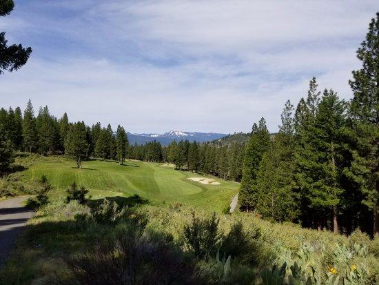 Portola, CA: 1st tee box at The Dragon Golf Club
