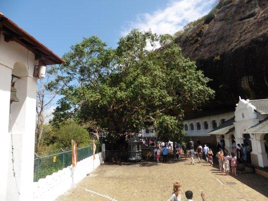 Dambulla, Sri Lanka: courtyard area.