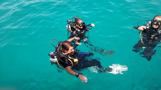 Aqua Tao: Fin de plongée