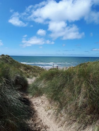 Ynyslas National Nature Reserve: photo0.jpg