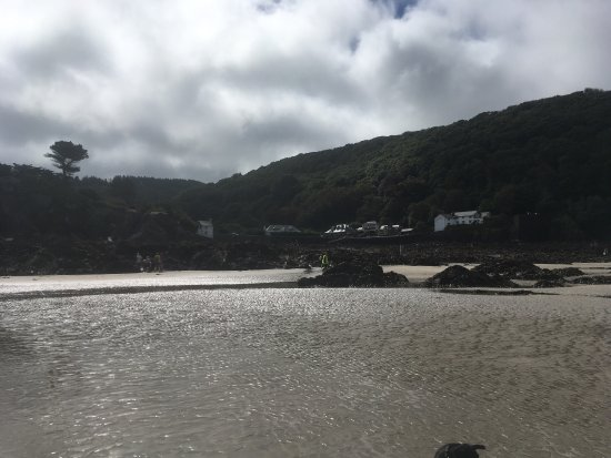 Lee, UK: photo6.jpg