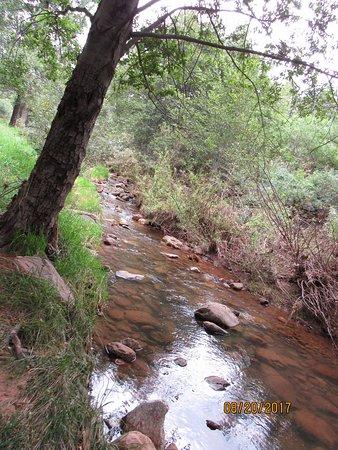 Kohl's Ranch Lodge: Tonto Creek