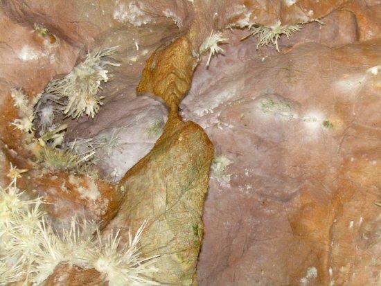 Skyline Caverns: Anthodites