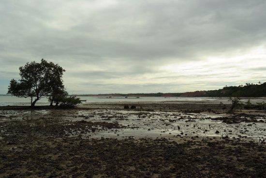 Cumuruxatiba: Praia