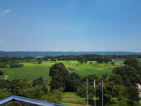 Saito, Japan: 전망대에서 본 전경