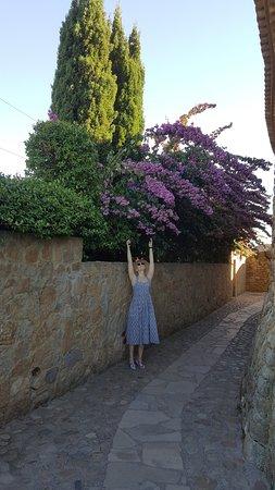 Pals, إسبانيا: башня